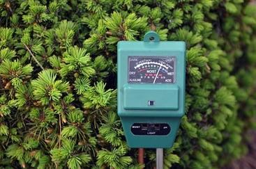 Best soil test kits for the garden