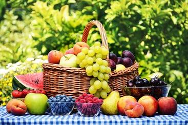 Fruit Harvest Guide