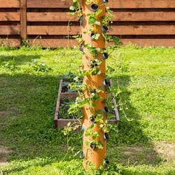 Vertical Hydroponic tower