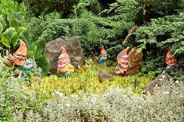 Some decorative garden gnomes in the garden