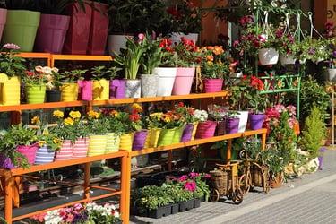Online Gardening Stores
