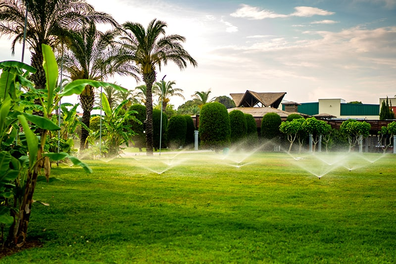 Types of Lawn Sprinklers