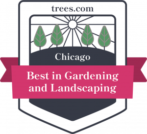 Best Gardening And Landscaping Services In Chicago Il Trees Com
