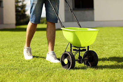 A fertilizer spreader on the lawn