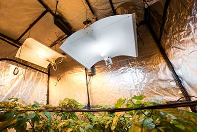 Grow Light Reflectors And Hoods A