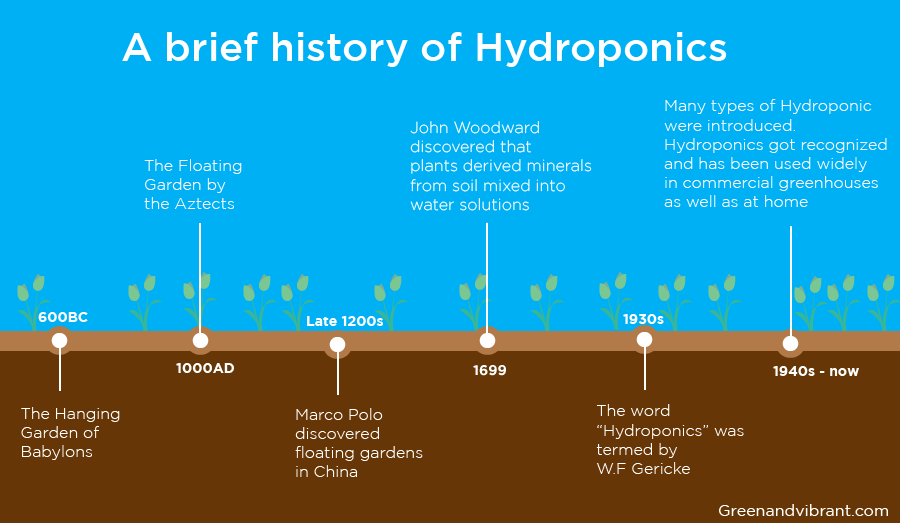 Hydroponic history