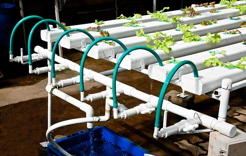 NFT Hydroponic system