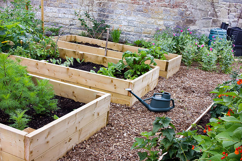 24 DIY Raised Garden Bed Plans & Ideas That You Can Build In ... Raised Garden Box Design Ideas on small front garden design ideas, flower bed box ideas, raised bed with bench, outdoor bench ideas, safari box ideas, thanksgiving box ideas, planter box ideas, baby box ideas, cookies box ideas, herb garden design ideas, date box ideas, recycling box ideas, unique container garden ideas, christmas box ideas, backyard herb garden ideas, travel box ideas, tree box ideas, camping box ideas, dessert box ideas, recipe box ideas,