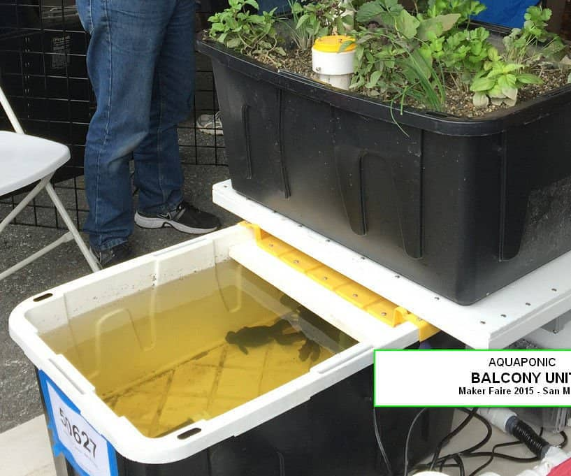 15 Diy Aquaponic Plans You Can Actually Build Trees Com