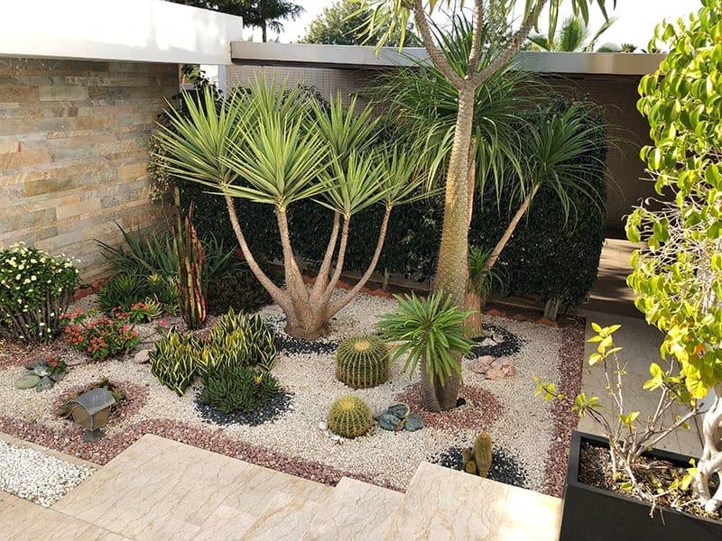 15 Amazing Desert Landscaping Ideas Trees Com