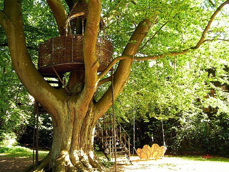 General Treehouse Instructions And Tips by Treehousebuilding