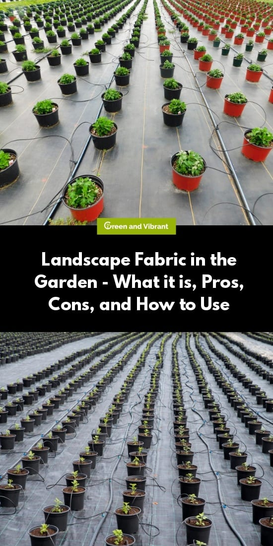 Landscape Fabric in the Garden - What it is, Pros, Cons, and How to Use