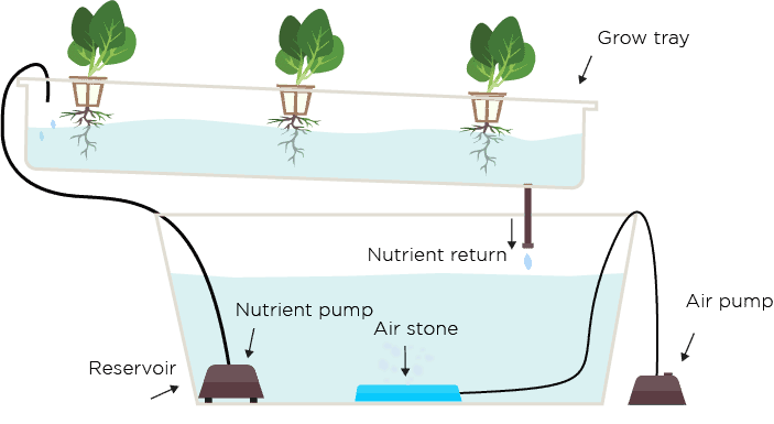 Recirculation Hydroponics: Best Practices For Recirculation