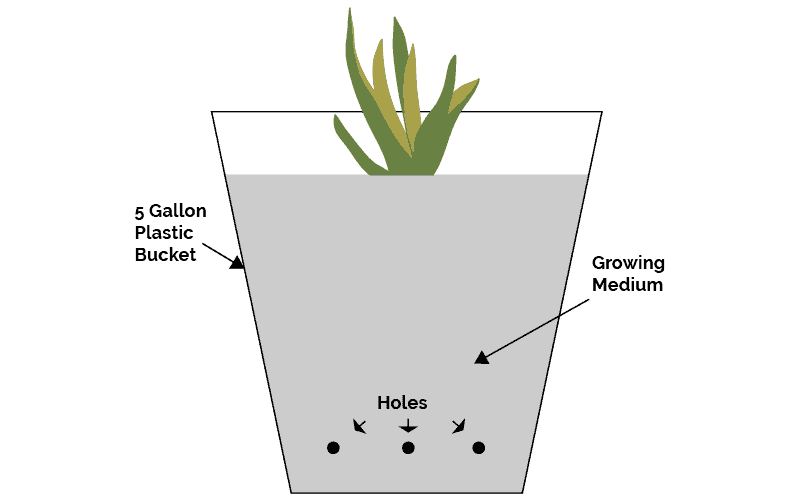 Simple Bucket Hydroponic System