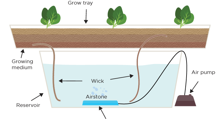 Hydroponic Systems Different Types And How They Work Green And