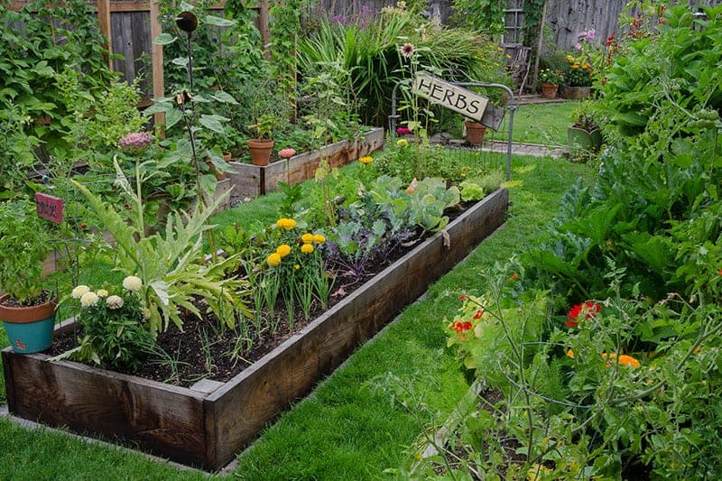 Classic wooden raised bed