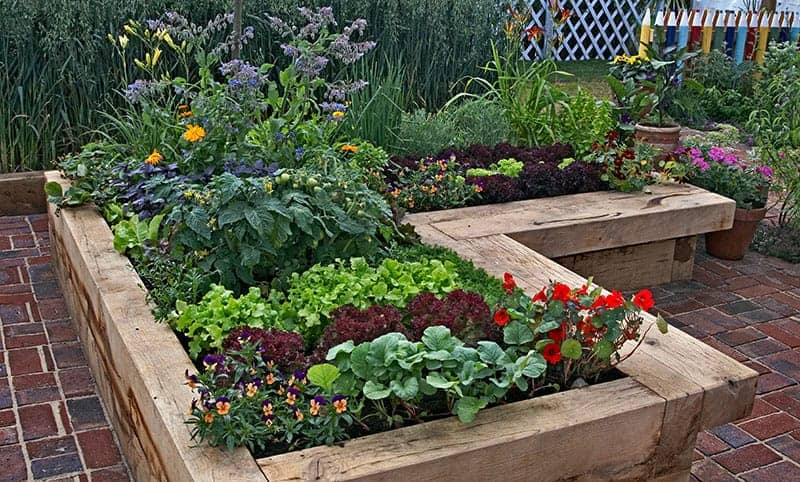 L-Shaped Wooden Raised Bed