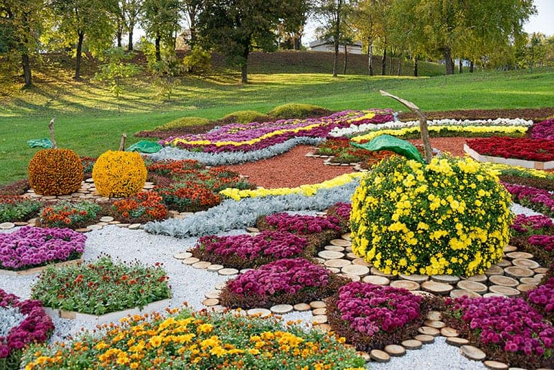 Complex Pattern Flower Bed