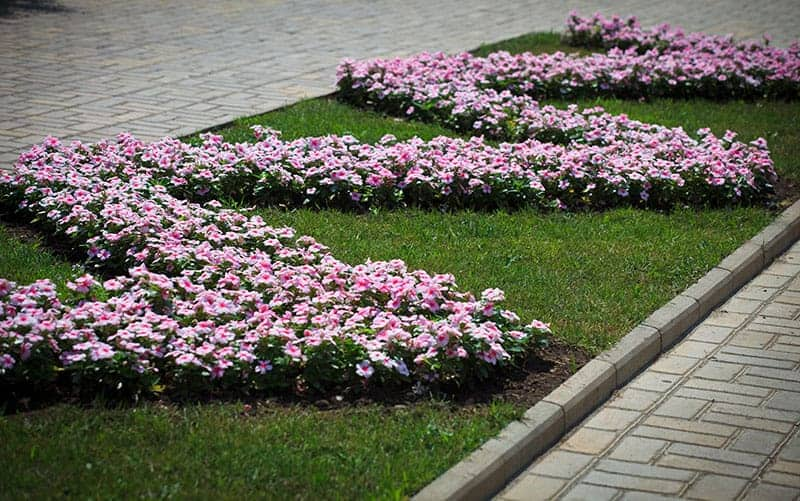 Geometric Pattern Flower Bed