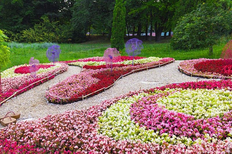 Wave Flower Bed