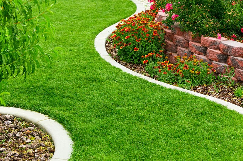 Curved Stone Path