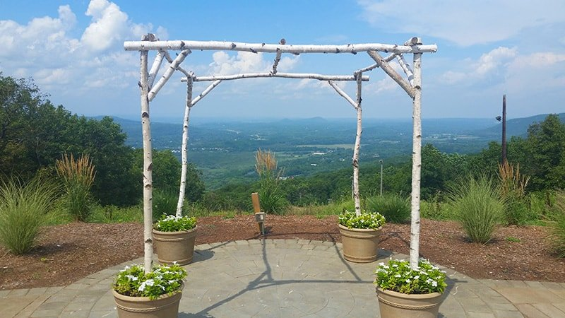 Birch Tree Wedding Trellis
