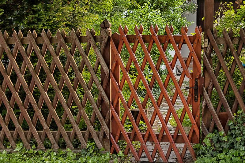Trellis Fence, 2-in-1