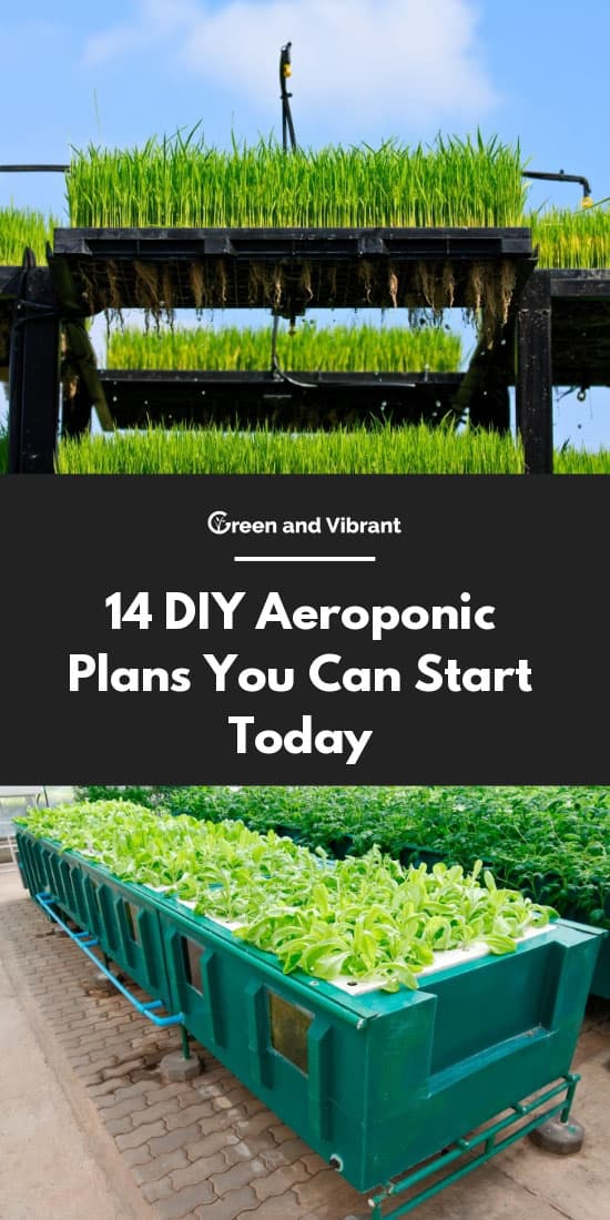 14 DIY Aeroponics Plans You Can Start Today | Green and Vibrant