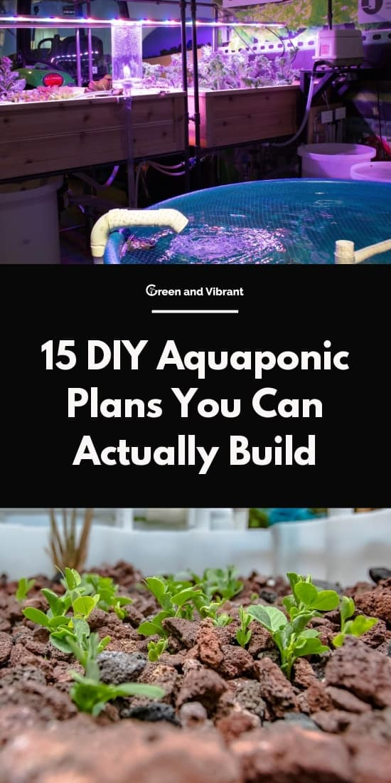 15 Diy Aquaponic Plans You Can Actually Build Green And
