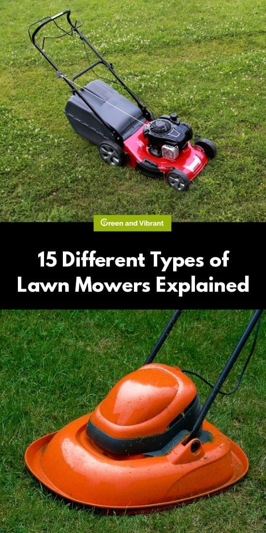 15 Different Types of Lawn Mowers Explained