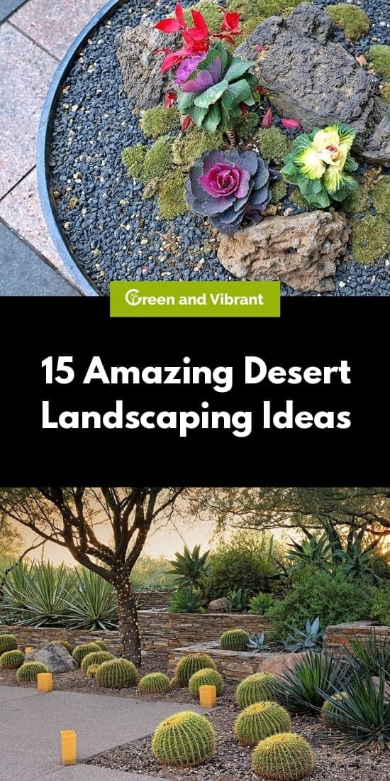 15 Amazing Desert Landscaping Ideas Green And Vibrant