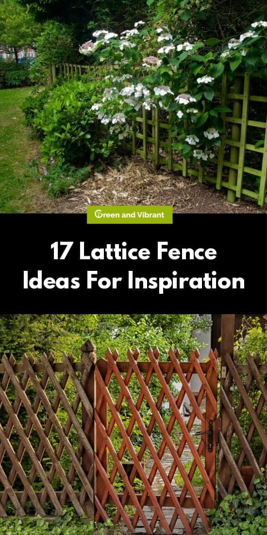 17 Lattice Fence Ideas For Inspiration