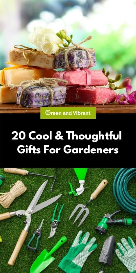 20 Cool & Thoughtful Gifts For Gardeners