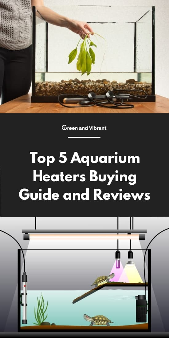 Top 5 Aquarium Heaters Buying Guide and Reviews