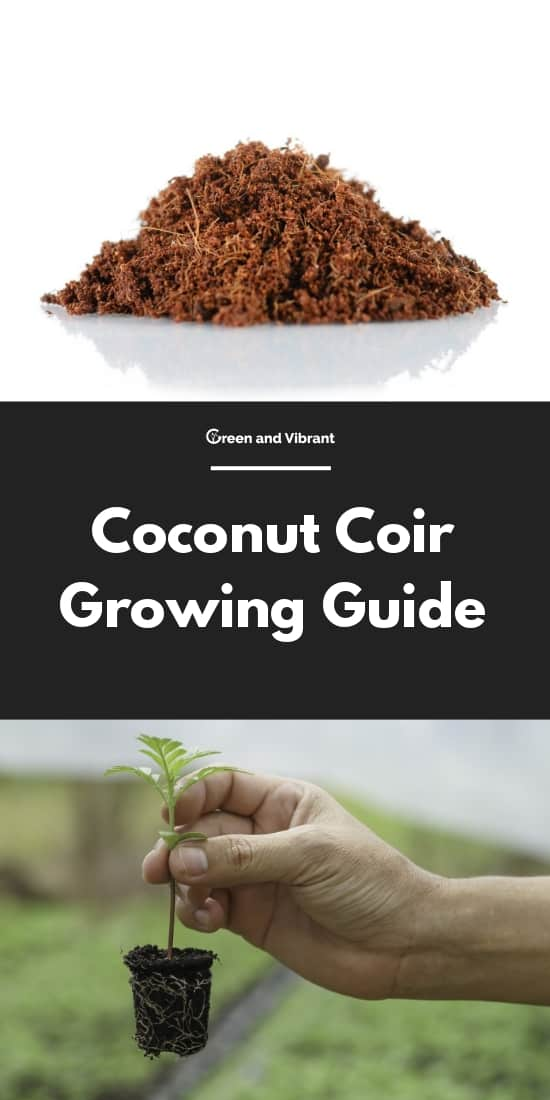 Coconut Coir Growing Guide