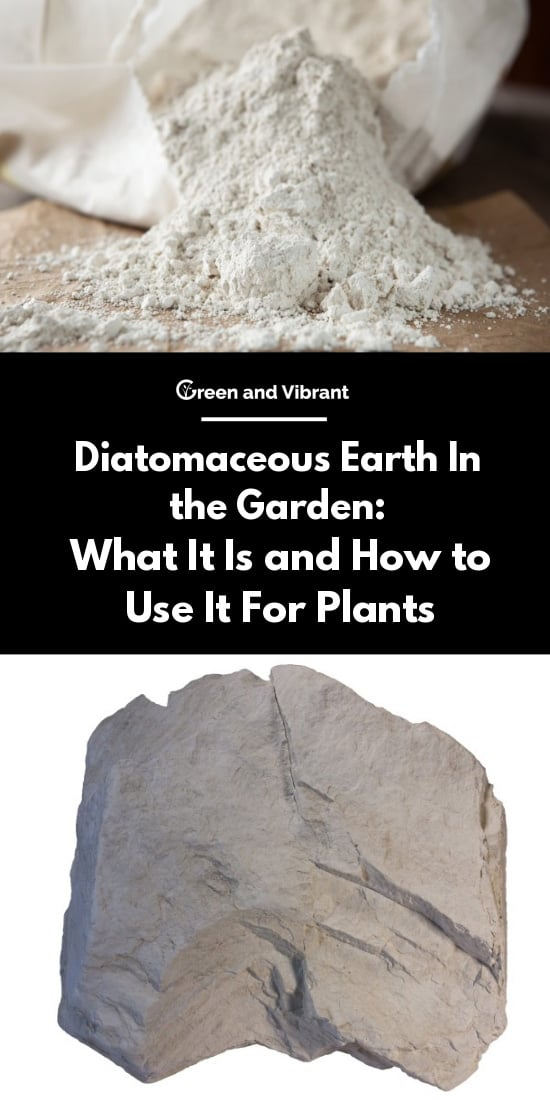 Diatomaceous earth in the garden what it is and how to - How to use diatomaceous earth in the garden ...