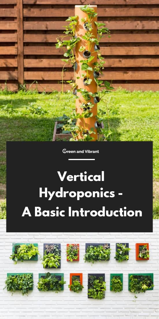 Vertical Hydroponics - A Basic Introduction
