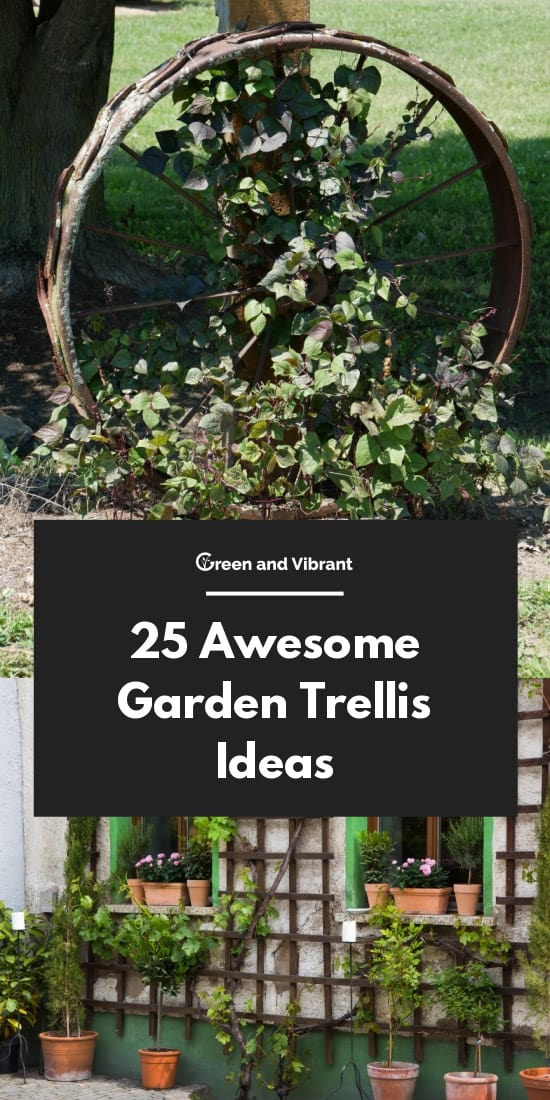 Awesome Garden Trellis Ideas