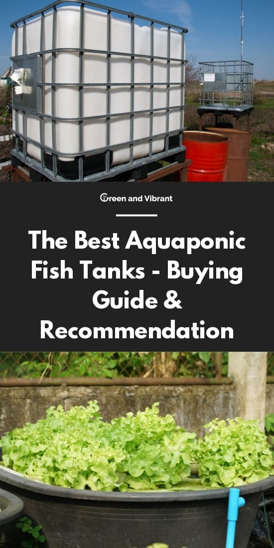 The Best Aquaponic Fish Tanks - Buying Guide & Recommendation