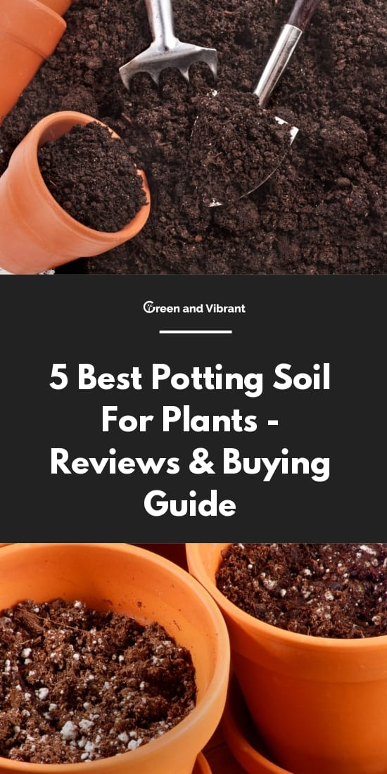 5 Best Potting Soil For Plants - Reviews & Buying Guide