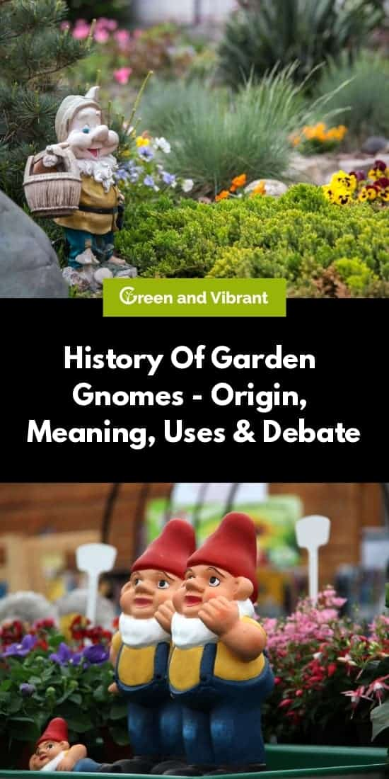 History Of Garden Gnomes - Origin, Meaning, Uses & Debate