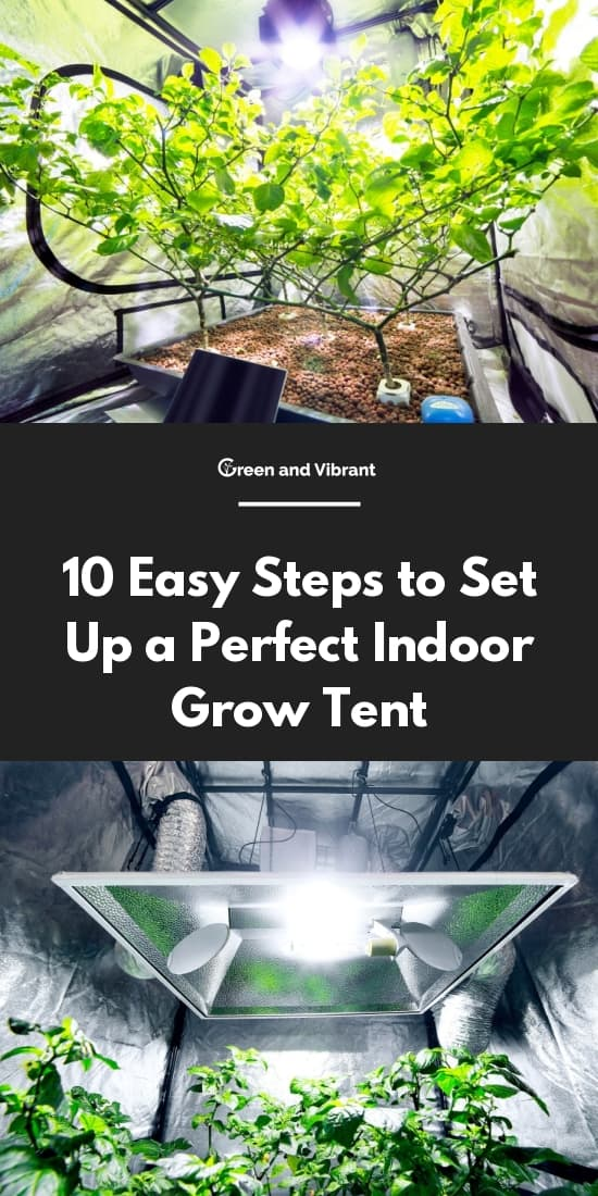 Conclusion. Setting up a grow tent ... & 10 Easy Steps to Set Up a Perfect Indoor Grow Tent | Green and Vibrant