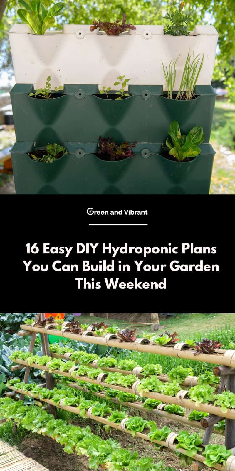 16 Easy DIY Hydroponic Plans You Can Build in Your Garden This Weekend