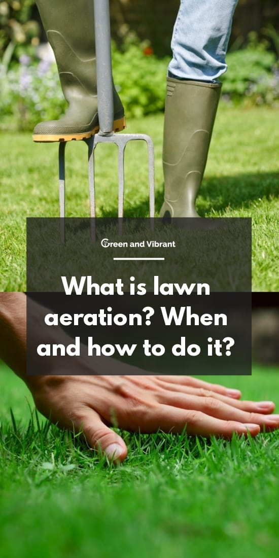What is lawn aeration? When and how to do it?