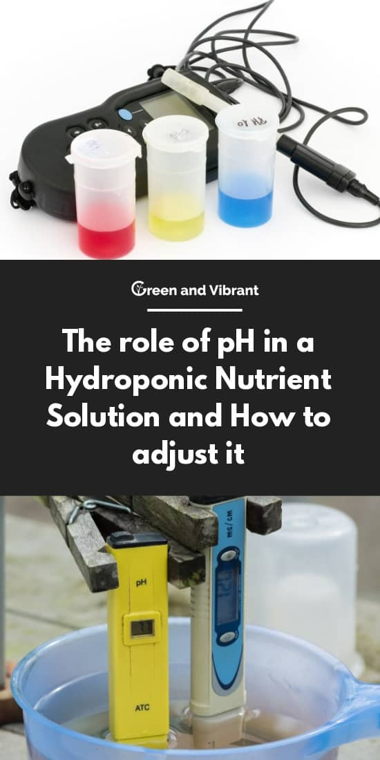 The role of pH in a Hydroponic Nutrient Solution and How to adjust it