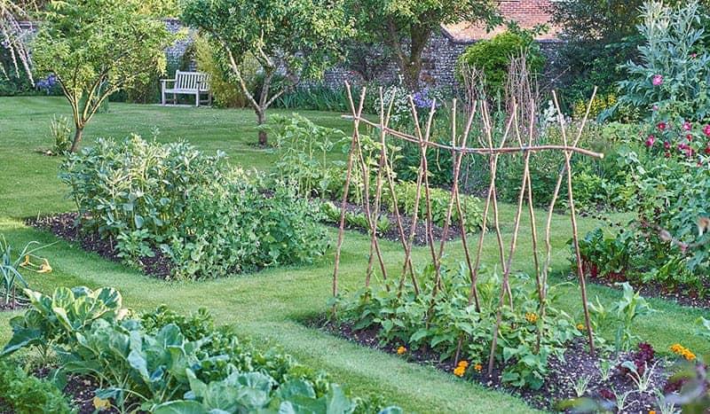 25 Incredible Vegetable Garden Ideas Green And Vibrant