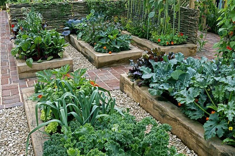 25 Incredible Vegetable Garden Ideas, How To Make A Small Backyard Vegetable Garden