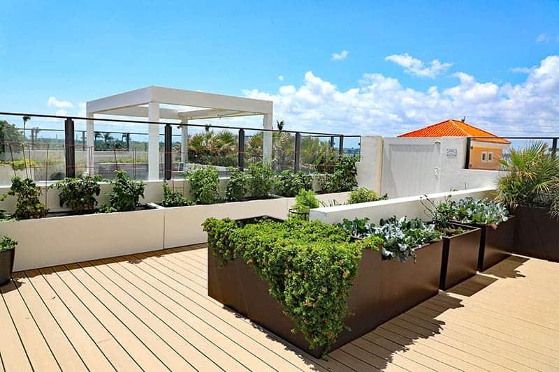 Vegetable Deck