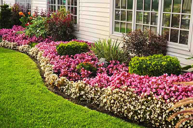 Visual appeal of lawn edging